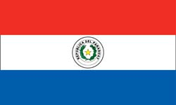 Paraguay flag 2013